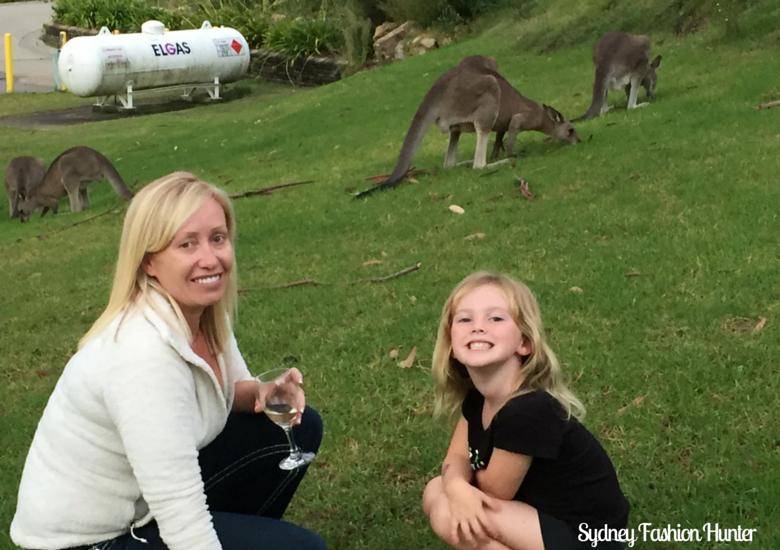 Active Holidays Lake Conjola: Kangaroos
