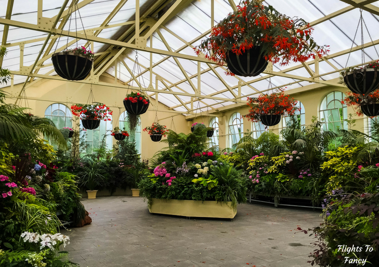 Flights To Fancy: A Rainy Day In Spectacular Cataract Gorge Launceston - Launceston City Park Greenhouse