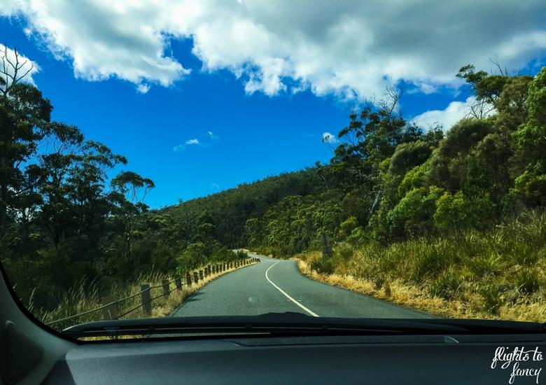 Flights To Fancy: Tasmanian Road Trip - Winding Road