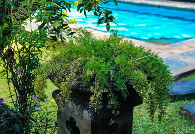 The Club Villas Seminyak: Gardens in 3 bedroom private pool villa