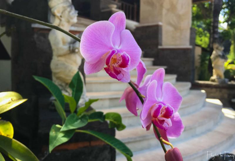 The Club Villas Seminyak: Seminyak villas reception entry with purple orchid
