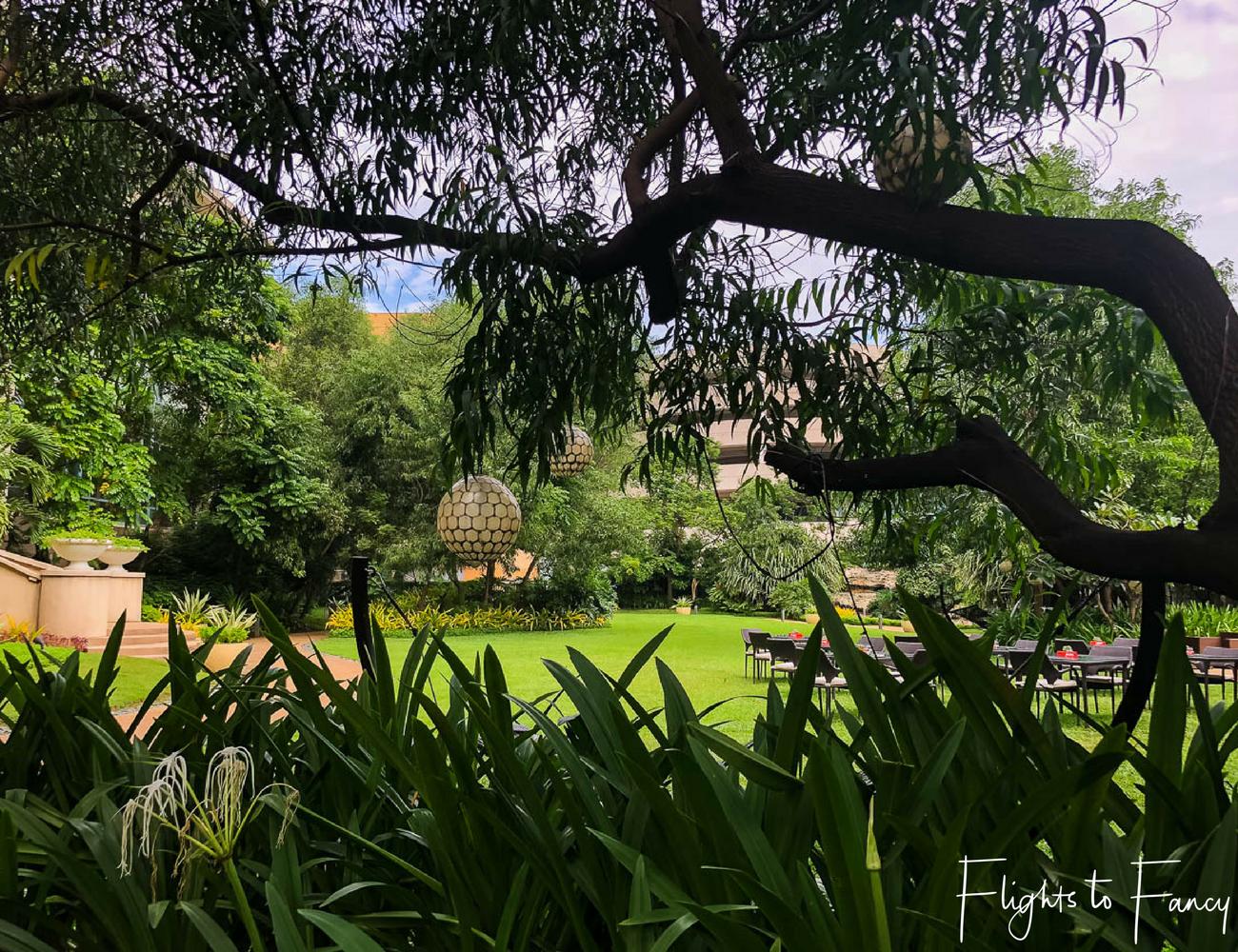 Flights To Fancy @ Radisson Blu Cebu City. Secret garden in a 5 star hotel in Cebu
