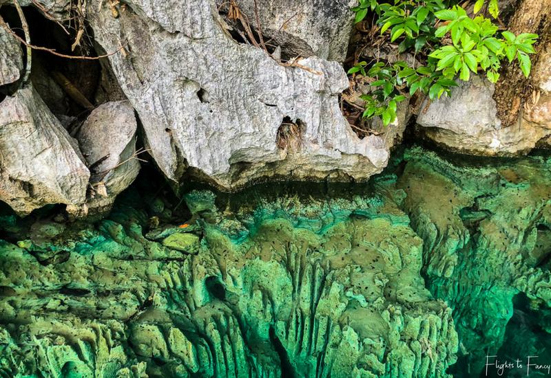 Island Hopping Coron: Kayangan Lake Coron