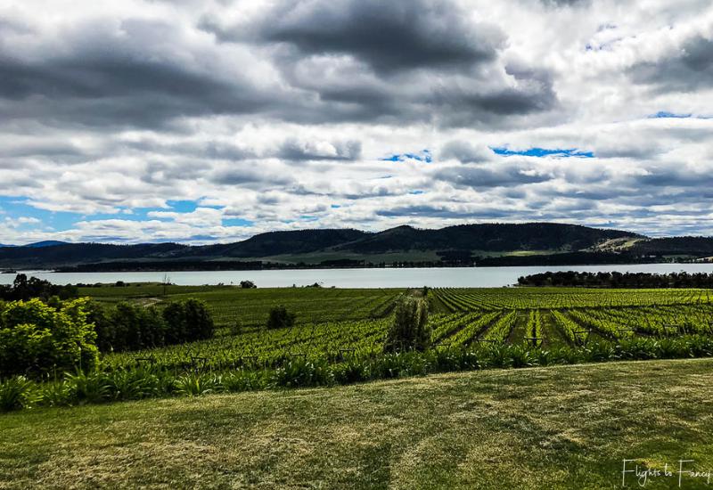 Best Wineries In Tasmania: Riversdale Estate Winery Lake