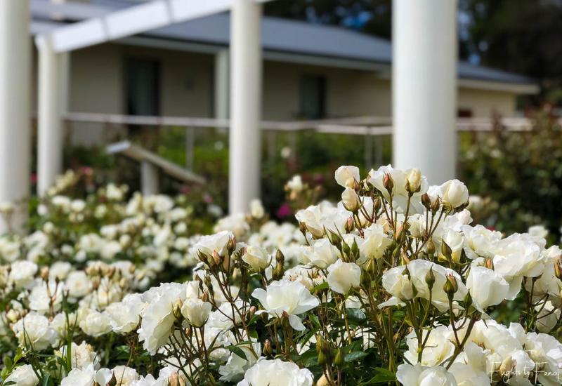 Best Wineries Tasmania: Floral Garden Riversdale Estate Winery